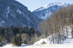 Alpen, österreichisch Stockbild