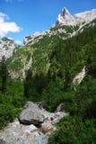 Alpen Royalty-vrije Stock Afbeeldingen