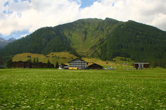 Alpen Lizenzfreies Stockbild
