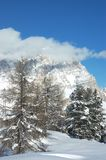 Alpen-Berg lizenzfreie stockfotos