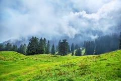 Alpen in de lente, Zwitserland Stock Afbeeldingen