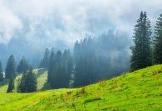 Alpen in de lente, Zwitserland Stock Fotografie