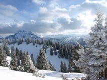 Alpen in Duitsland Stock Foto