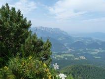 Alpen in Europa lizenzfreie stockbilder