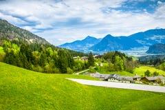 Alpen groene vallei van Oostenrijk stock foto's
