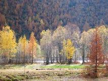 Alpen im Fall Lizenzfreie Stockbilder