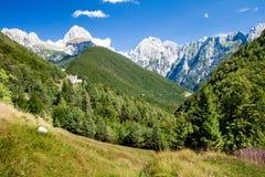 Alpen in Slovenië Royalty-vrije Stock Afbeelding