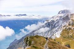 Alpengarten Schynige Platte lizenzfreie stockfotos