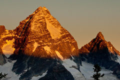 Alpenglow. Early Morning Alpenglow Sunlight on Mount Sir Donald Royalty Free Stock Photo