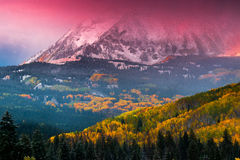 Alpenglow Above Beckwith. Alpenglow shrounds West Beckwith Mountain during sunrise along Kebler Pass in Colorado Royalty Free Stock Photo