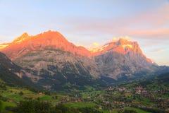 Alpenglow in Grindelwald, Svizzera Immagine Stock Libera da Diritti