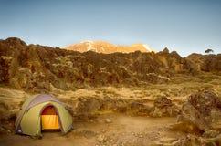 Alpenglow Kibo, Kilimanjaro nationalpark, Tanzania, Afrika Fotografering för Bildbyråer