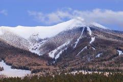 Alpenglow na montagem Humphries Fotos de Stock Royalty Free