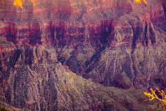 Alpenglow paints the cliffs Stock Image