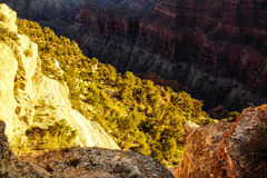Alpenglow paints the cliffs and ridges Royalty Free Stock Images