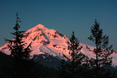 Alpenglow sur le capot de Mt. Photos stock