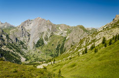 Alpenprofil Stockbilder