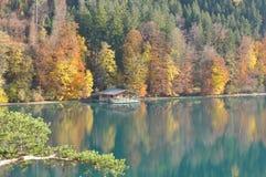 Alpensee Immagini Stock