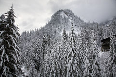 alpental小屋山滑雪雪结构树华盛顿 图库摄影