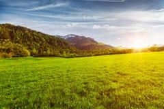 Alpenwiese im Bayern, Deutschland Lizenzfreie Stockfotografie
