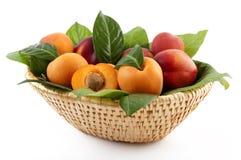 Alperces e pêssegos Fotografia de Stock