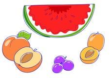 Alperces, pêssegos, melancia Imagens de Stock Royalty Free