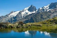 alpes法国la meije 免版税图库摄影