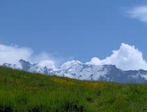 Alpes Fotografia de Stock Royalty Free