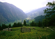 Alpes austríacos Fotos de Stock Royalty Free