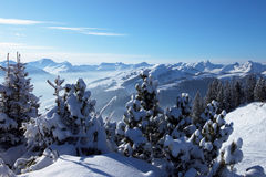 Alpes austríacos. Saalbach Fotografia de Stock Royalty Free