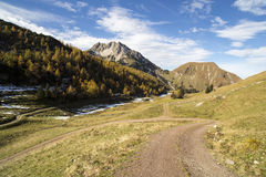 Alpes autrichiennes avec la manière Photo libre de droits