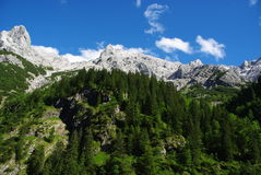 Alpes bavarois Photo stock