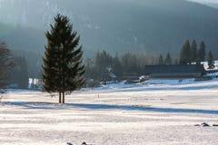 Alpes d'hiver Photo stock