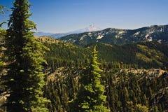 Alpes da trindade e montagem Shasta foto de stock