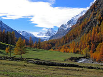 Alpes dans l'automne Images stock
