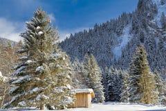 Alpes dans la neige Images libres de droits