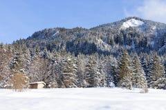 Alpes dans la neige Image libre de droits