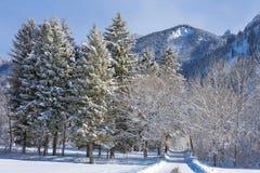 Alpes dans la neige Images stock