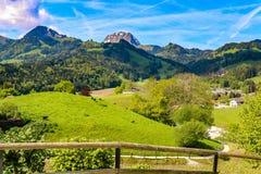 Alpes de Guyere image libre de droits