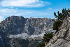 Alpes de l'Autriche Image stock