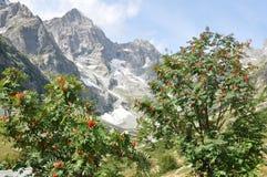 Alpes, Frances Image libre de droits