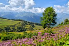 Alpes franceses Foto de Stock Royalty Free