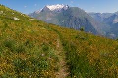 Alpes francesi Fotografia Stock