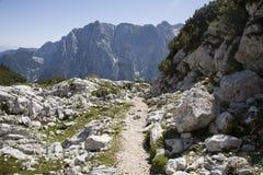 Alpes julianos - caminhada imagens de stock royalty free