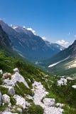 Alpes julianos em Slovenia Fotos de Stock Royalty Free