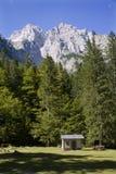 Alpes julianos - pico de Skrlatica fotos de stock