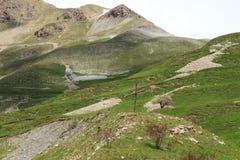 Alpes maritimes dans les sud des Frances Image stock