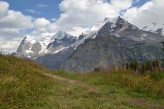 Alpes suíços fotografia de stock royalty free