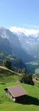 Alpes suíços, Jungfrau Tal Imagens de Stock Royalty Free