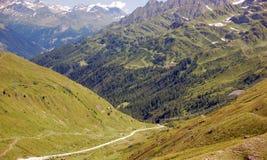 Alpes verdes e arborizados Fotografia de Stock